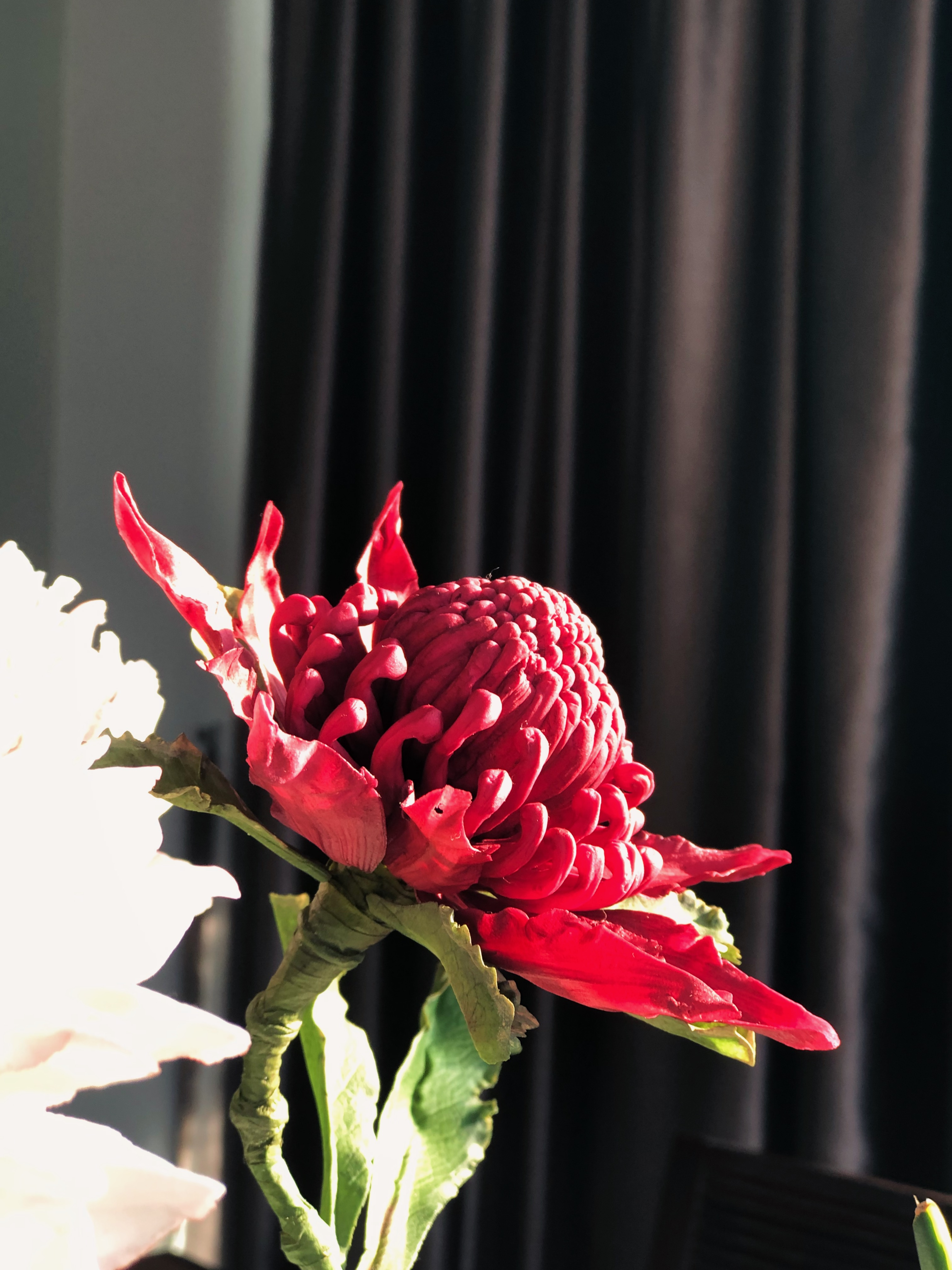 Warattah Sugar Flower