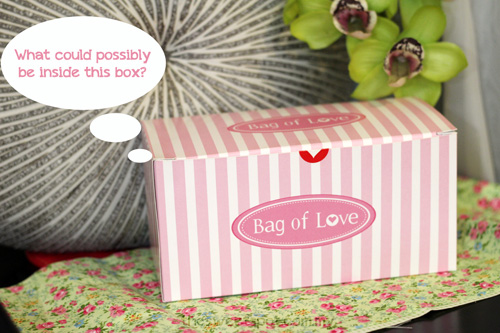 bag of love debut