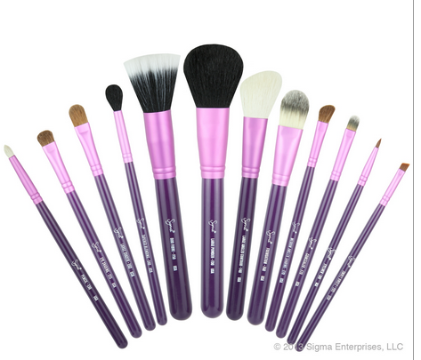 Sigma Brush Kit