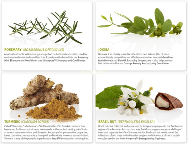 aveda ingredients