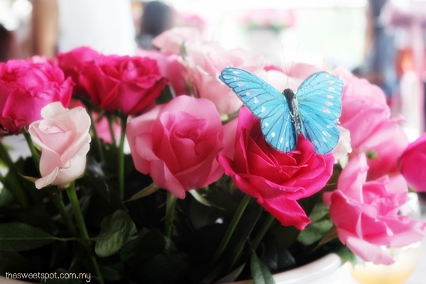 ma cherie roses