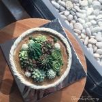 succulent buttercream basket